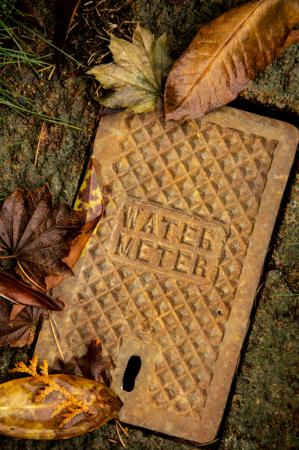 Water Meter II