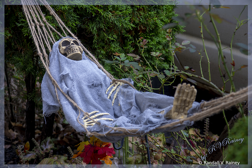 Halloween Swinger