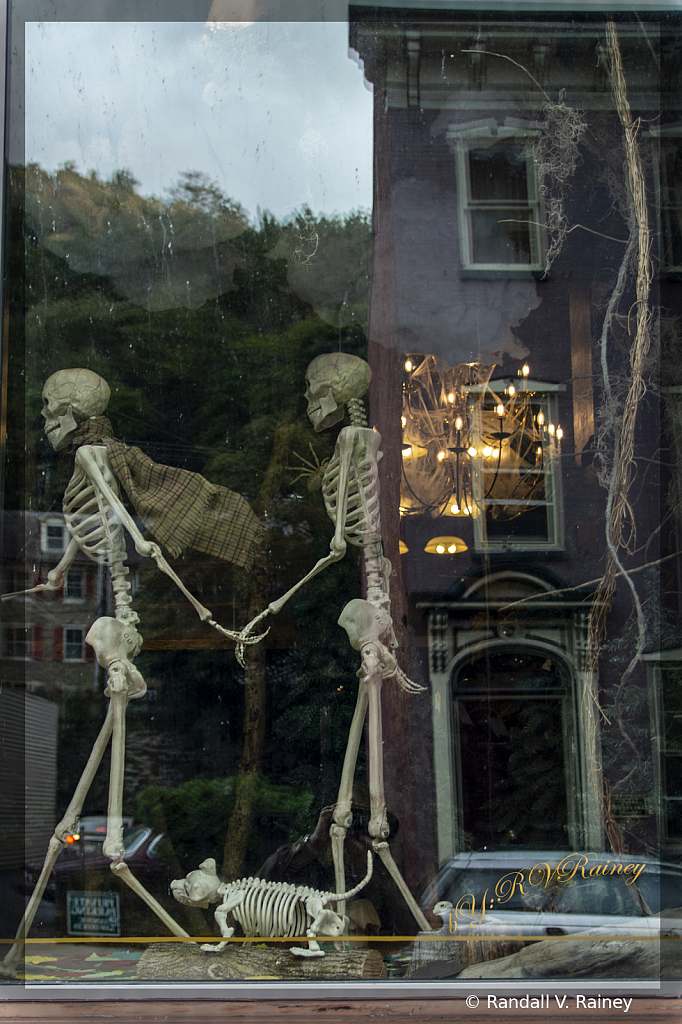 Family of Skeletons out for a walk...