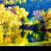War Eagle Mills Creek - ID: 15760222 © Rita Jane Smith