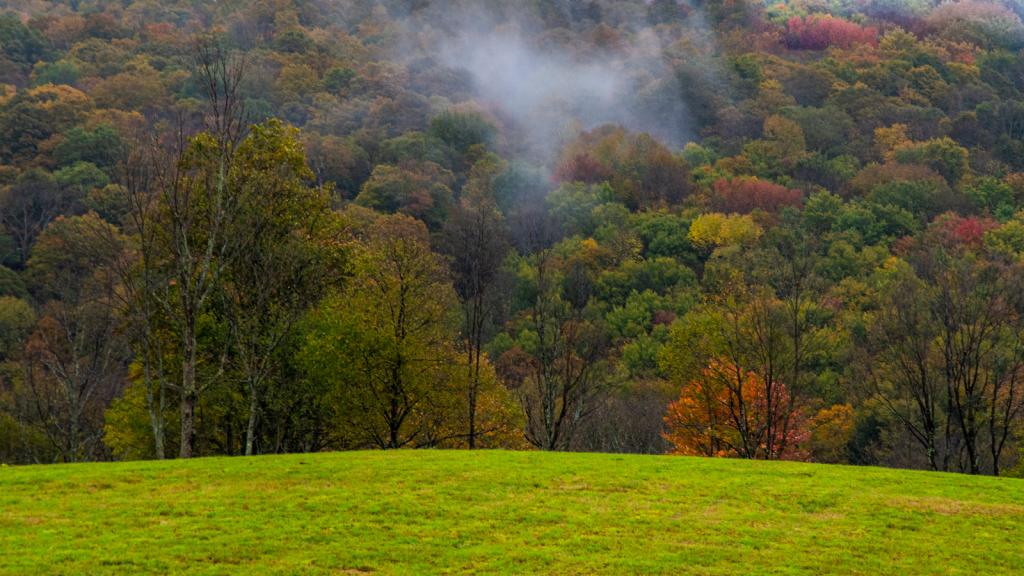 A Little Autumn Mist