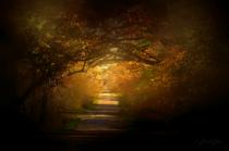 Autumn Boughs