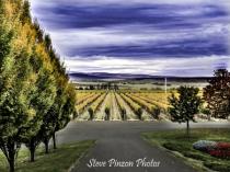 Garrison Creek Winery