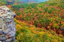 Colors of Arkansas