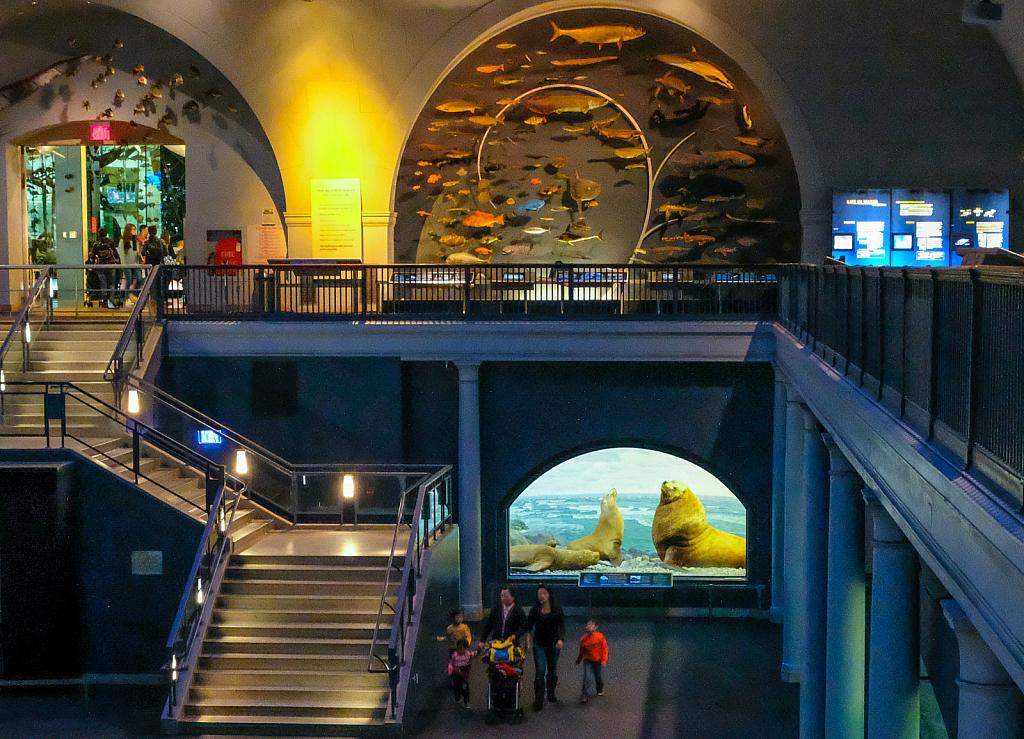Explore - American Museum of Natural History