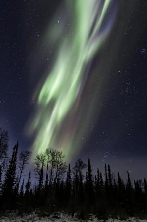 Aurora 4121