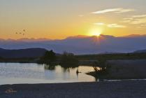 Daybreak At Cold Creek