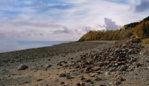 At the Bay Of Fundy