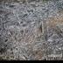 © Edward v. Skinner PhotoID# 15767653: Cracked Ice