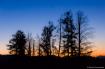 Big Sky Twilight
