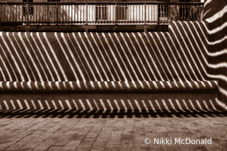 Bench in Light and Shadow