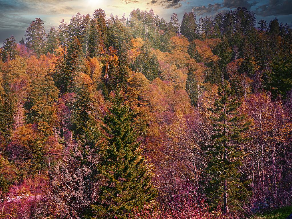 Smokey Mountains - ID: 15775172 © Michael Wehrman