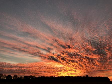 Sunset 1- 11/29/19