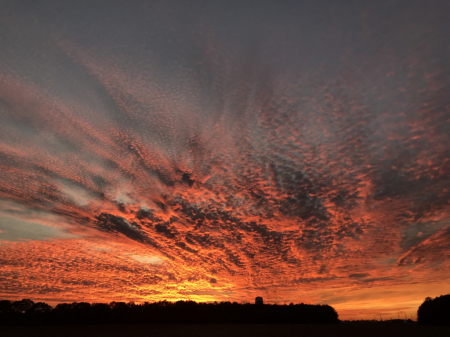 Sunset 2- 11/29/19