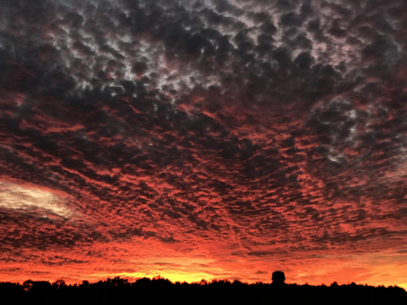 Sunset 3- 11/29/19