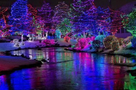 Christmas lights/000345