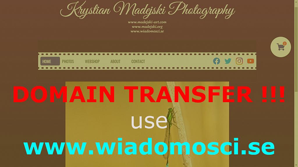 Welcome to madejski-art.com