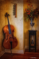 Music-The Cello