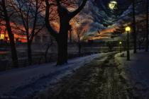 Moonlit Winter Walk