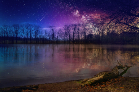Jacksonburg Lake