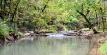 Dogwood Canyon Trout Stream