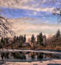 Whisper Of Winter