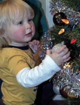 Placing Ornaments