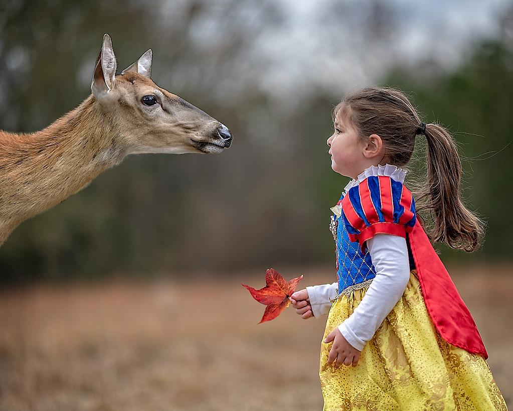 Snow White meets Bambi