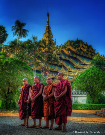~ ~ MONKS TAKING PICTURES ~ ~