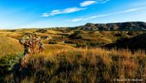 Landscape of Theodore Roosevelt National Park
