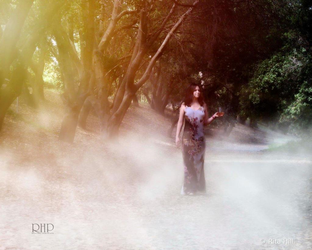 Untitled - ID: 15785120 © Rita Hill
