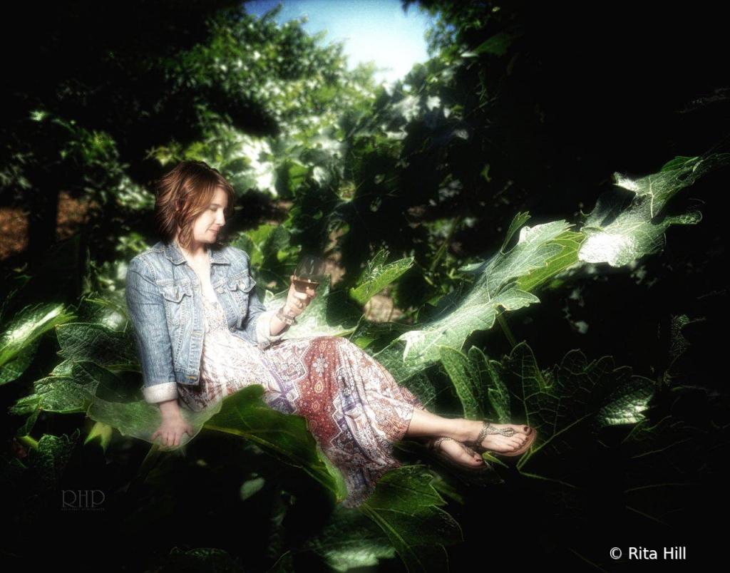 Untitled - ID: 15785137 © Rita Hill