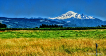 Mount Baker from 40 Miles West.