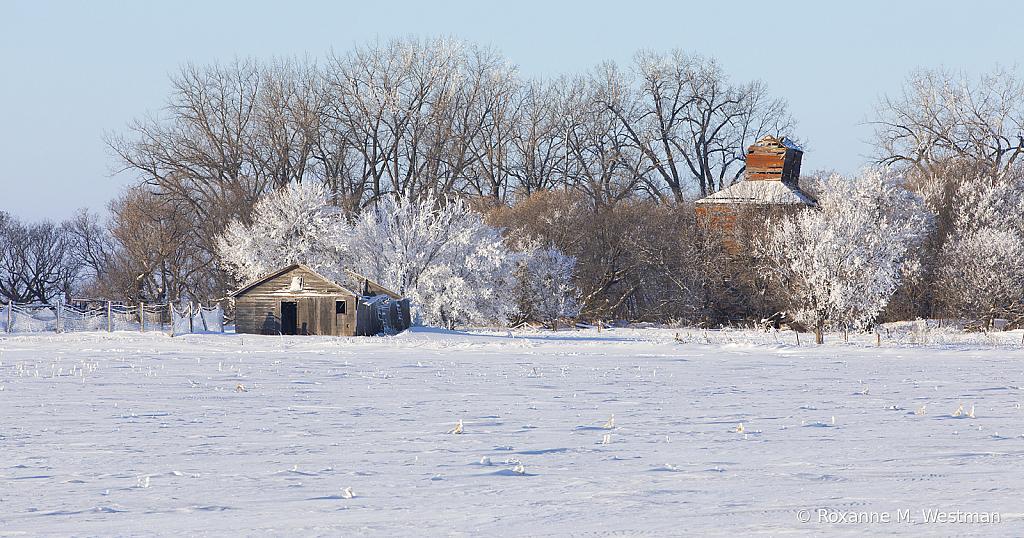 Frosty farmstead
