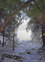 Framed in Ice