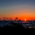 © Lady T PhotoID# 15785777: When the sun goes down...