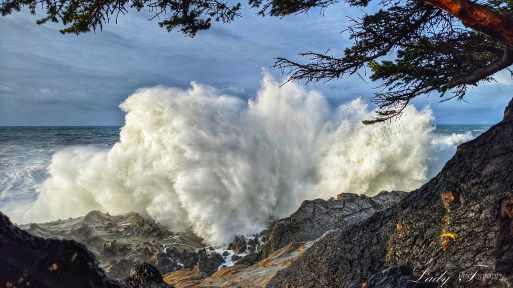 High Surf Warning - ID: 15785773 © Lady T