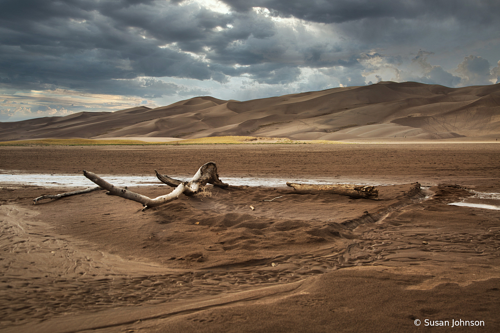 Great Sand Dunes National Park - ID: 15787372 © Susan Johnson