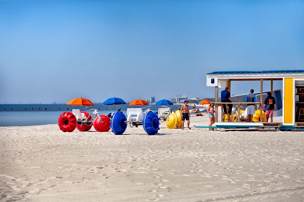 Beach Rovers