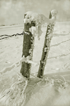 Frigid Posts