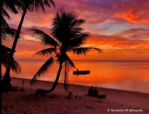 ~ ~ BEACH SUNSET ~ ~