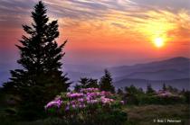 Sunrise on Jane Bald...