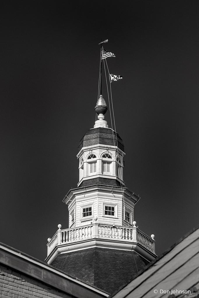 B&W Dome Maryland Capital 1-30-20 024 - ID: 15790241 © Don Johnson