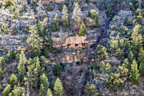 New Home Sites in Walnut Canyon