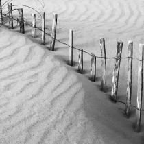 Beach Wabi Sabi