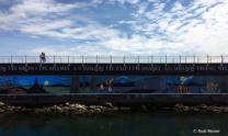 Harbour walkway, Victoria BC