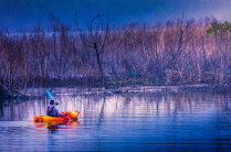 Cruising the Creek