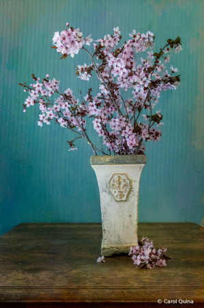 Borrowed Blooms