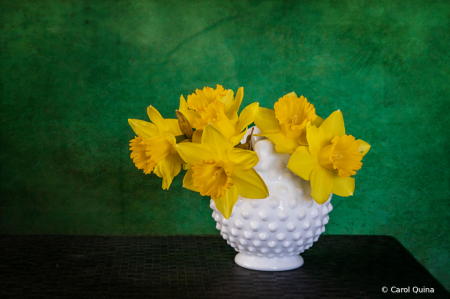 A Vase full of Sunshine