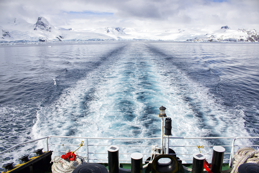 Ship's Wake, Antarctica
